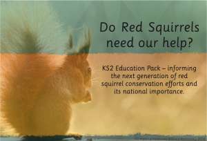 The Red Squirrel Education Pack